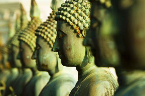Resultado de imagen de dharma budismo